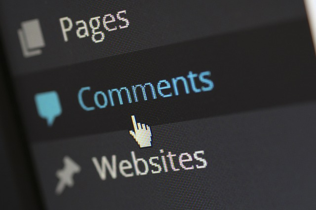 Blog Commenting
